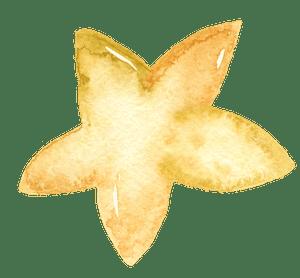 Watercolour Star